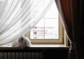 Окна стандартные (11)