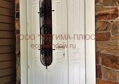 Двери входные (6)